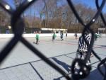 hockey1 - Copy
