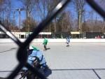 hockey2 - Copy